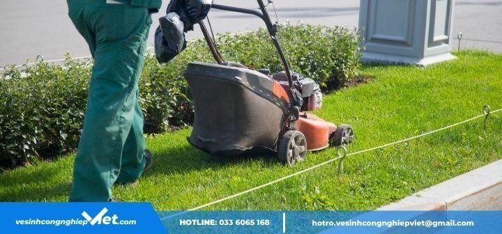 Máy móc cắt cỏ