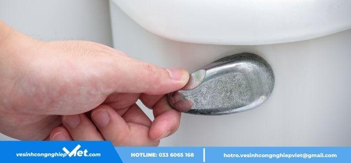 dội nước nhà vệ sinh